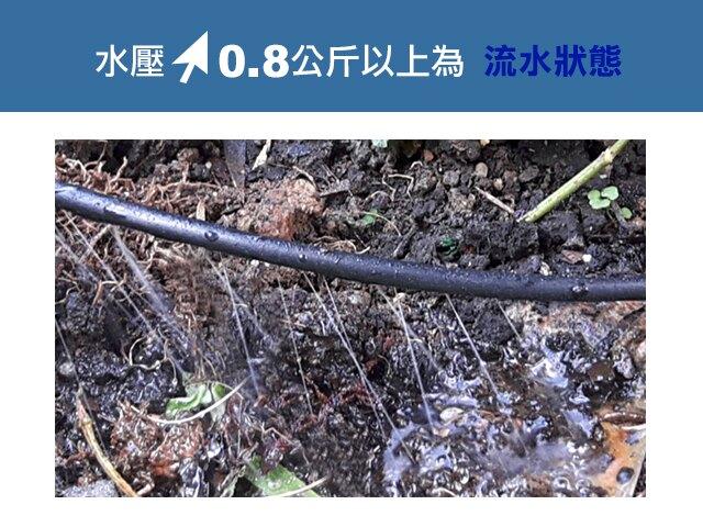 2分單邊多孔深層滲透PE管10米兩捲