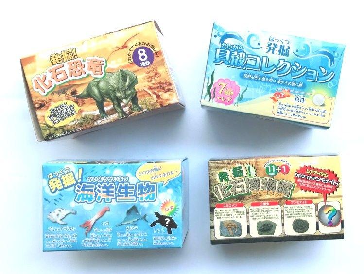 【隨機出貨不挑款】日本熱銷 發掘!貝殼/恐龍/化石博物館/海洋生物 擬真考古玩具 活動 獎品 禮物*夏日微風*