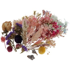 P Prettyia 1箱 ドライフラワー 花材 セット 押し葉 押し花 本物 フラワー 自然 乾燥花 レンジ クラフト
