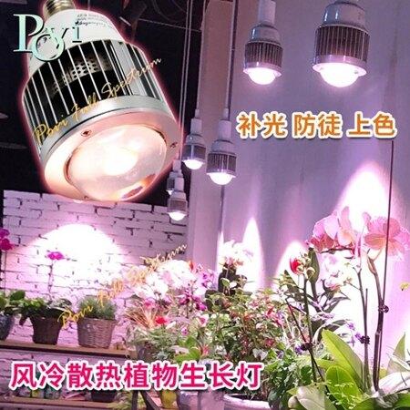 珀譽全光譜led植物生長燈大棚蔬菜花卉多肉補光防徒上色聚光燈泡 年貨節預購