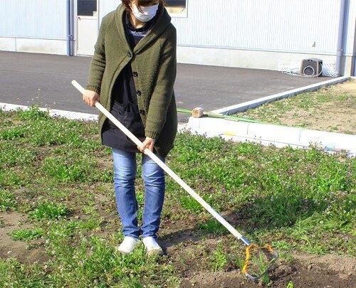 日本道灌けずっ除草太郎DK-802(花圃菜園除草用)木柄