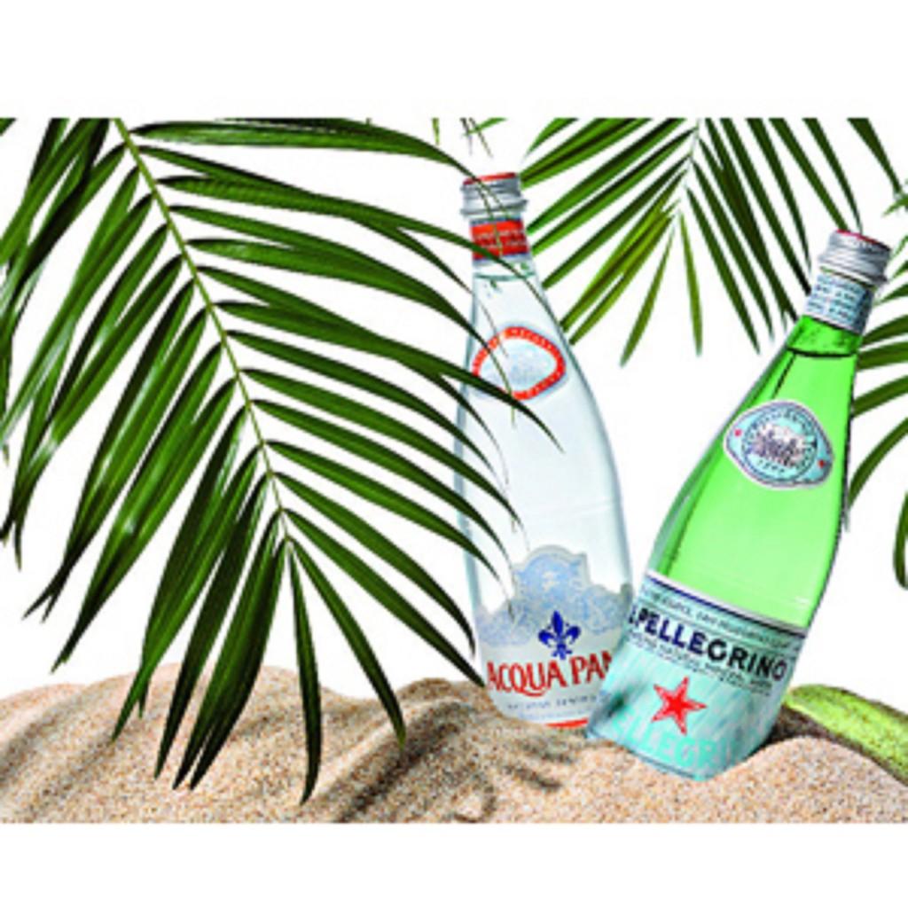 【宅配免運】S.Pellegrino 聖沛黎洛 氣泡礦泉水(250mlx24入x箱)玻璃瓶