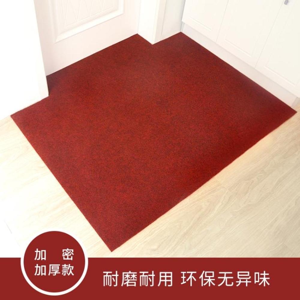 入戶門防滑地墊門口腳踏墊進門吸水腳墊地毯