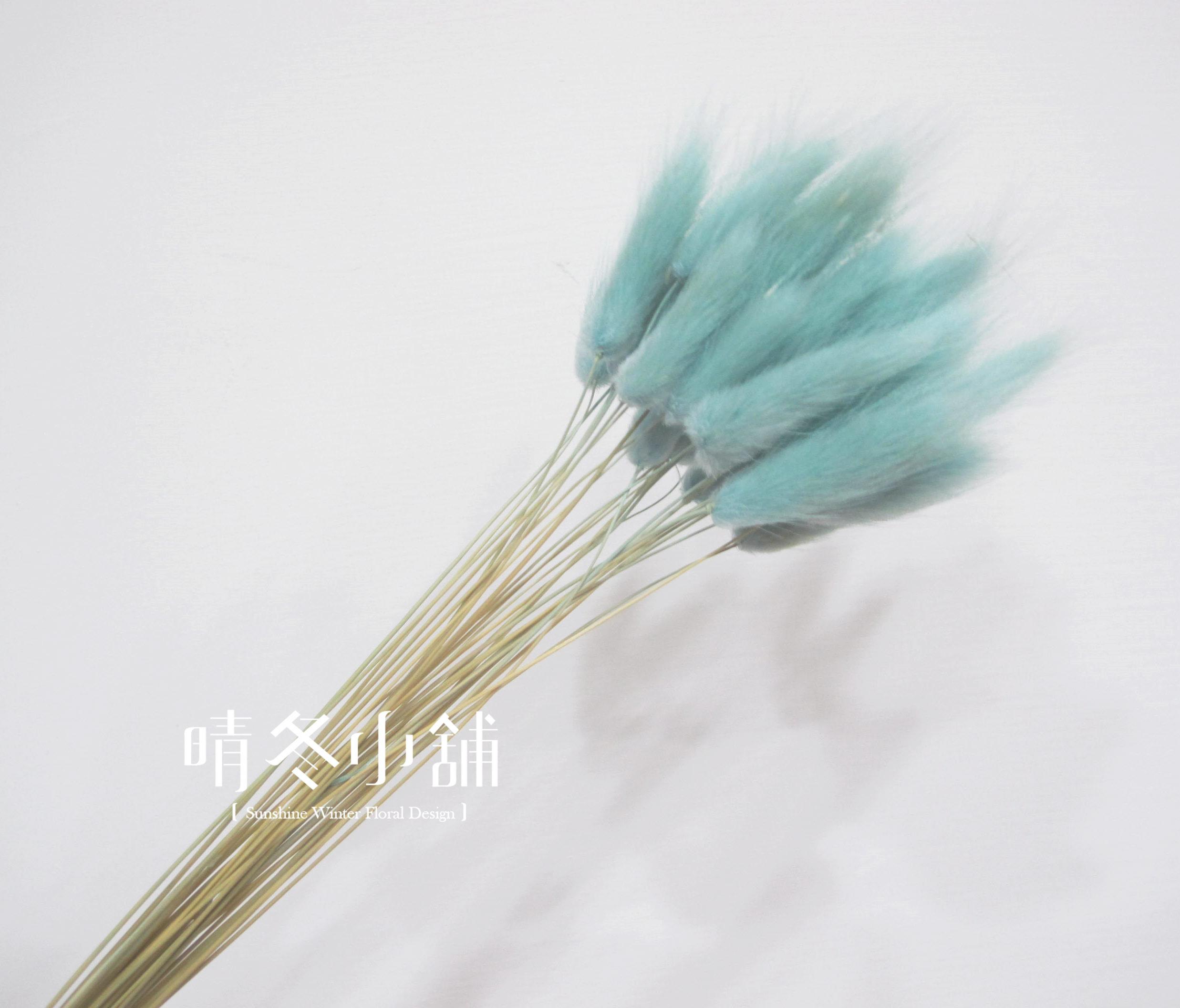 [晴冬小舖] 淡藍色兔尾草-進口乾燥花材(乾燥花束 不凋花 乾燥花圈)3D1513
