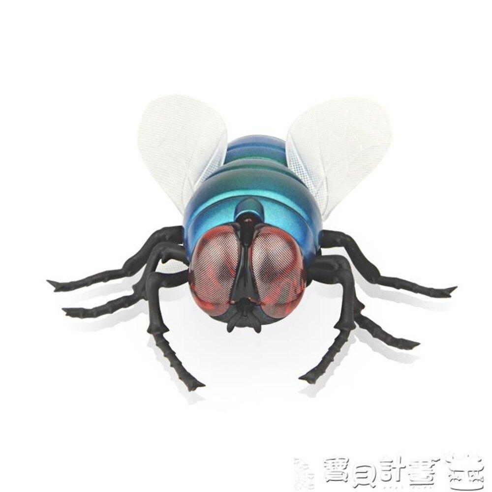 遙控玩具 遙控蒼蠅遙控瓢蟲遙控蜜蜂昆蟲動物愚人節整蠱惡搞玩具男孩嚇女孩JD BBJH