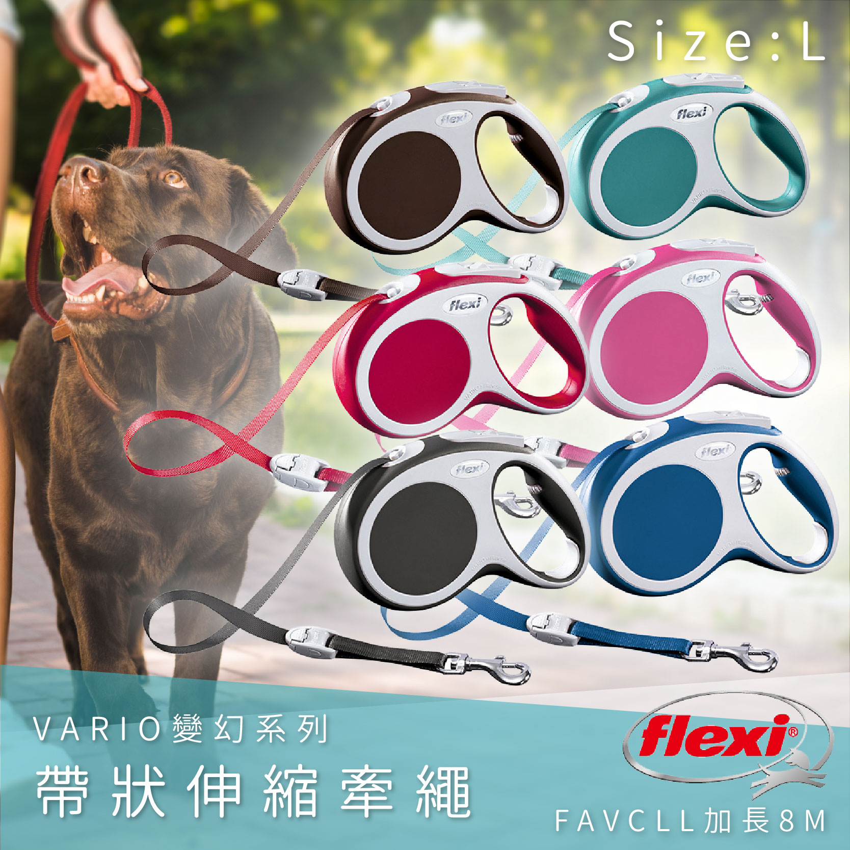 Flexi飛萊希 帶狀伸縮牽繩 L加長8米 FAVCLL 變幻系列 狗貓 外出用品 寵物用品 寵物牽繩 德國製 八色