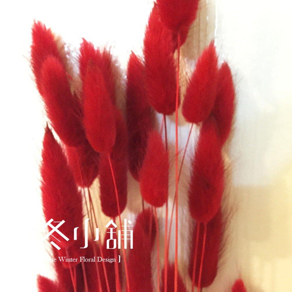 [晴冬小舖] 紅色兔尾草-進口乾燥花材(乾燥花束 不凋花 乾燥花圈)3D1504