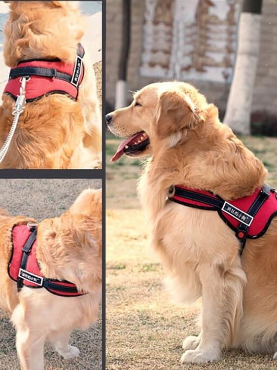 牽引繩 狗狗牽引繩胸背帶金毛狗中型犬狗鏈子大型犬狗繩項圈寵物用品k8