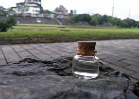 玫瑰果油分裝 皂用 手工皂 基礎原料 添加物 請勿食用(100ml、500ml、1L)