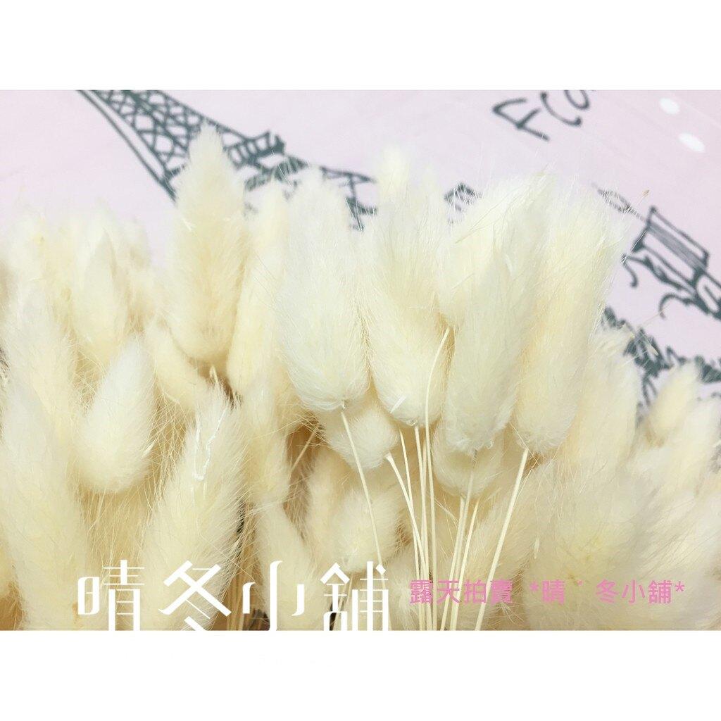 [晴冬小舖] 白色兔尾草-進口乾燥花材(乾燥花束 不凋花 乾燥花圈)3D1502