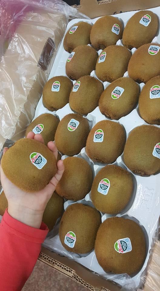 進口水果【紐西蘭Zespri綠色奇異果-巨無霸特大果】原封箱3.3公斤  買就送奇異果神器