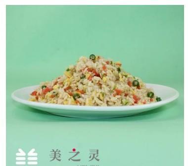 仿真中餐炒飯模型