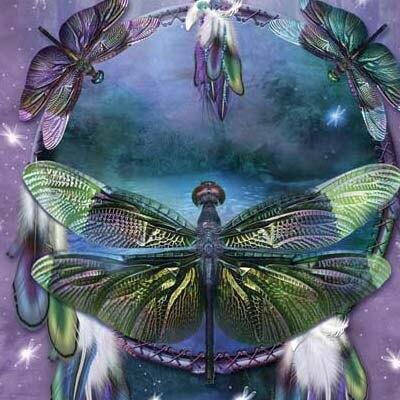 『摩達客』[ 預購 ]美國進口【The Mountain】Classic自然純棉系列 蜻蜓捕夢設計T恤