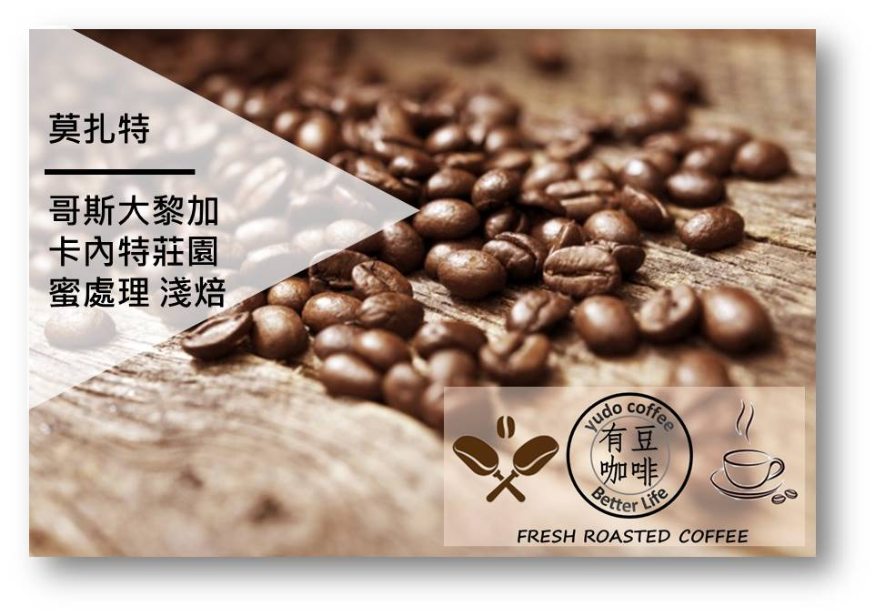 [有豆咖啡嚴選] 哥斯大黎加 卡內特莊園  音樂家系列 莫扎特 蜜處理 咖啡豆(半磅/濾掛式10入)
