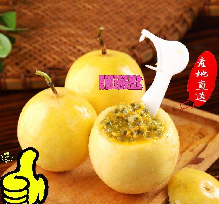 【台灣小農】南投埔里 金玉蘋果百香果 (特A級) 5斤/10斤