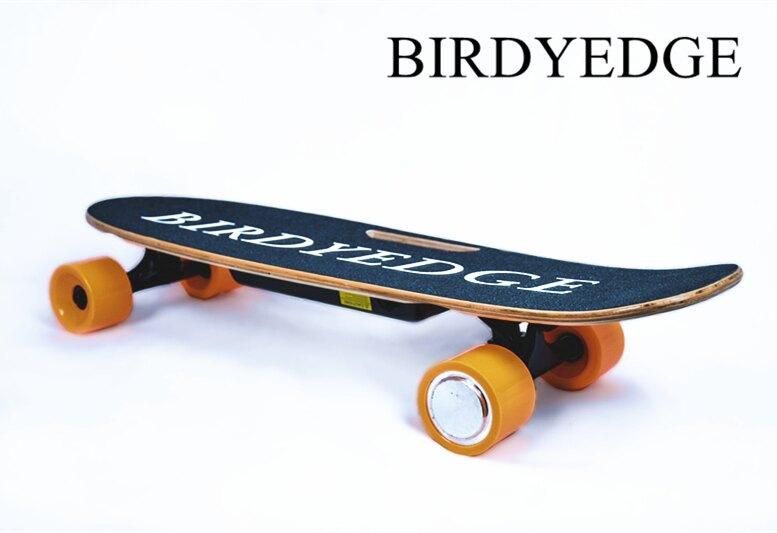 BIRDYEDGE 設計 美國電動滑板 電動車 滑板 四輪車 進口LG 加拿大