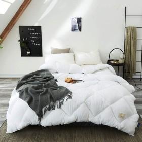 リバーシブルフェザービロード軽量掛け布団キング寝具羽毛布団ぬいぐるみマイクロファイバーは代替キルト羽毛布団を挿入オールシーズン塗りつぶし,白,59in×78.7in