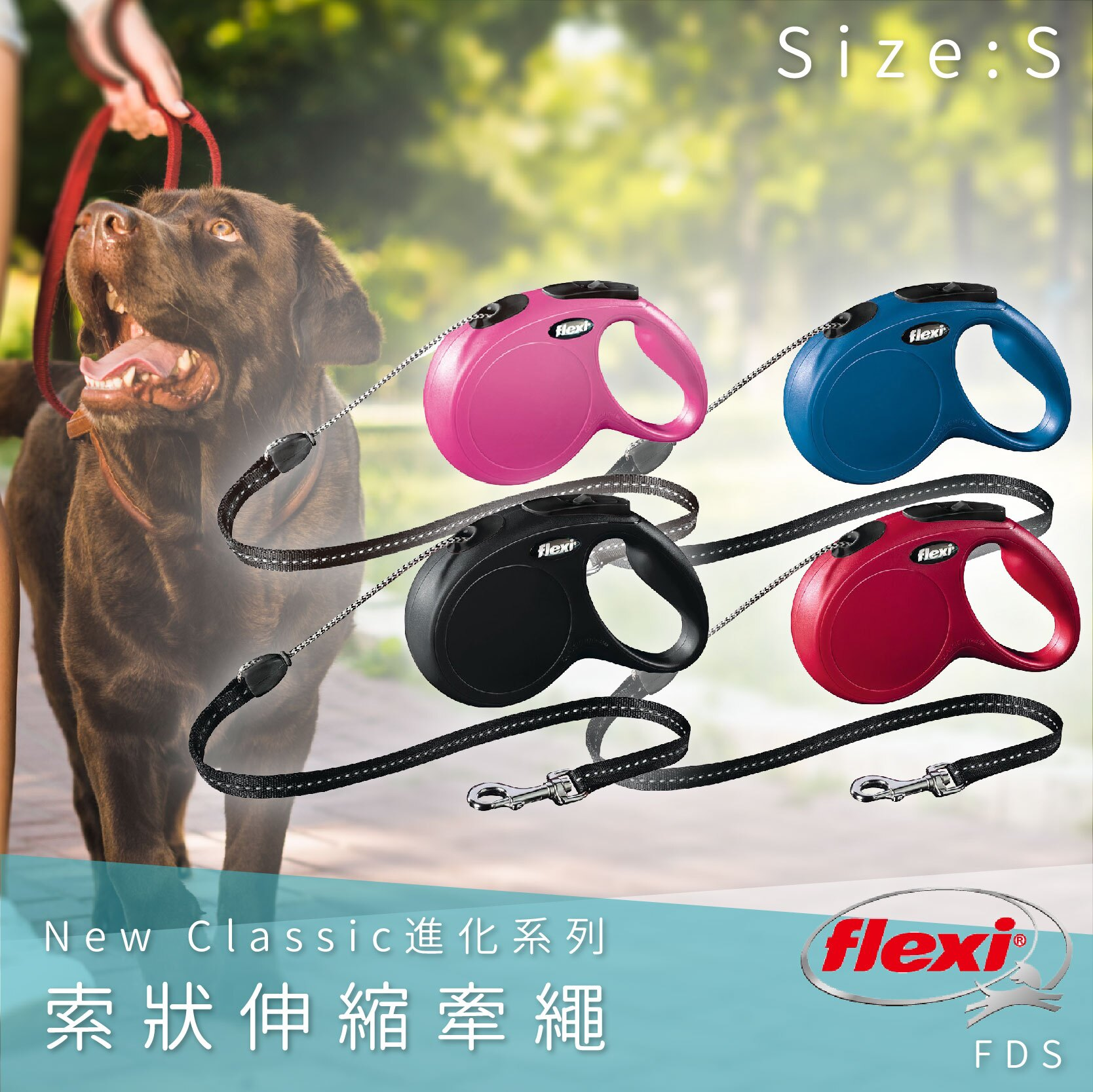 Flexi飛萊希 索狀伸縮牽繩 S FDS 進化系列 舒適握把 狗貓 外出用品 寵物用品 寵物牽繩 德國製 四色