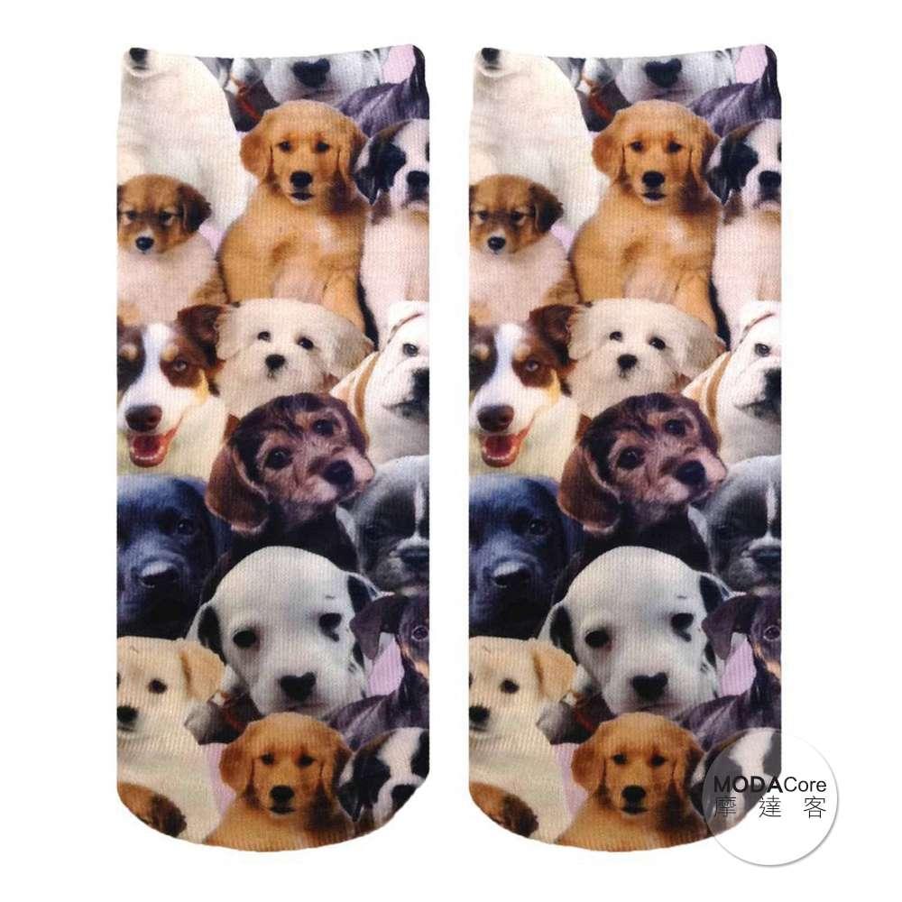 【摩達客】美國進口Living Royal犬犬狗狗群 短襪腳踝襪彈性襪動物圖案襪