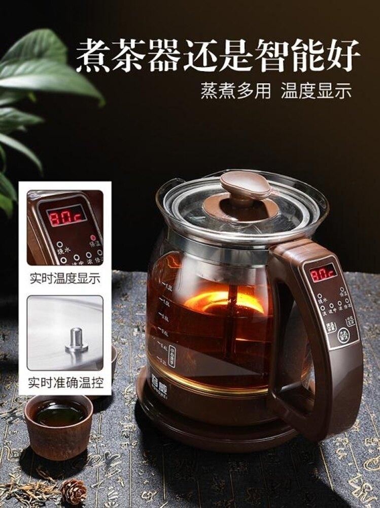 容威黑茶煮茶器蒸汽噴淋式全自動蒸茶器家用玻璃小普洱 艾家生活館 LX