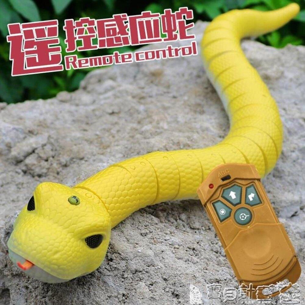 免運 抖音玩具 遙控蛇抖音玩具整蠱整人創意惡搞恐怖仿真水蛇嚇人神器真的蛇會動