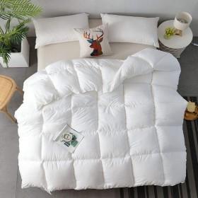 リバーシブルフェザービロード軽量掛け布団寝具羽毛布団ぬいぐるみマイクロファイバーは代替キルト羽毛布団を挿入オールシーズン王を埋めます,白,59in×78.7in