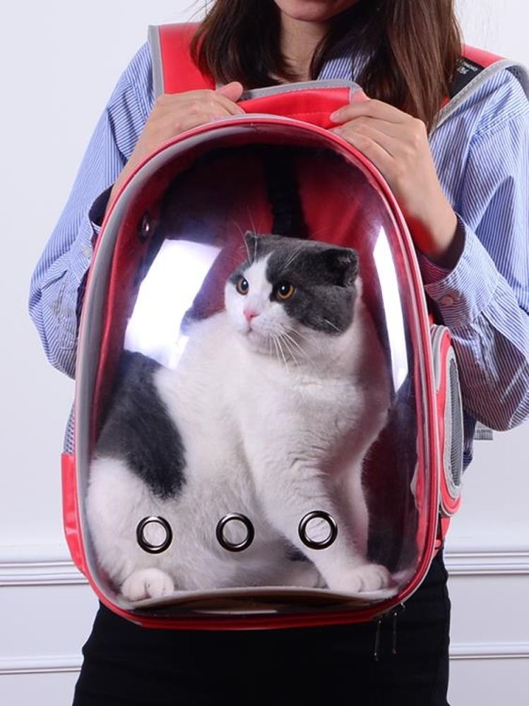 寵物外出包 貓包寵物包貓背包外出包便捷透氣雙肩包貓籠袋太空包艙包貓咪用品 歐歐流行館