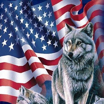 『摩達客』[ 預購 ]美國進口【The Mountain】Classic自然純棉系列 野狼與旗 深藍色設計T恤