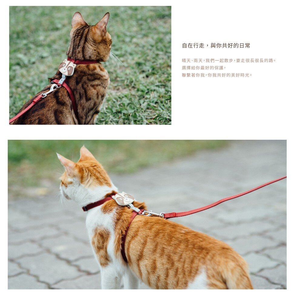 【tails&me 尾巴與我】經典尼龍帶 貓用牽繩 (酒紅)