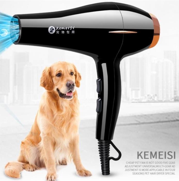 寵物吹水機 寵物吹風機大小型犬專用大功率靜音狗狗吹干吹毛神器烘干機吹水機
