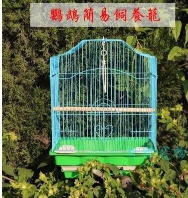 虎皮鸚鵡鳥籠大號不鏽鋼電鍍籠子八哥玄鳳牡丹鸚鵡籠鴿子籠  秋冬新品特惠