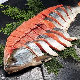 知床新巻鮭姿切身/計3.6kg(約32-36切)