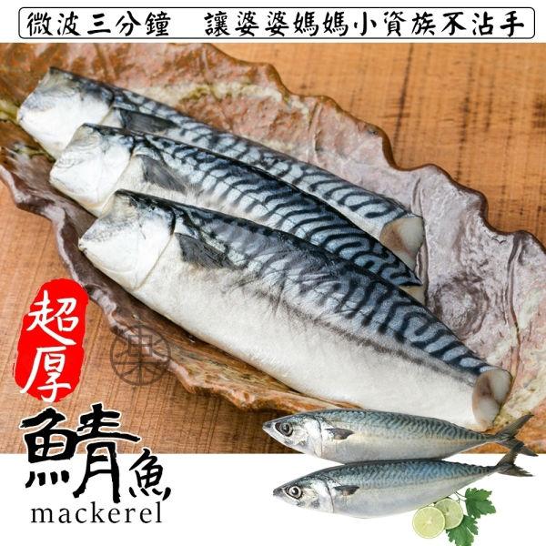 【滿777免運-海肉管家】3XL薄鹽鮮嫩鯖魚(1片/每片約180g±5%)