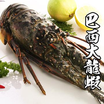 【海鮮王】巴西大龍蝦*1隻組(450-500g)