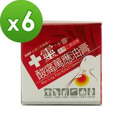 【十靈本舖】十靈酸痛萬應油膏30g/瓶*6瓶組(乙類成藥)