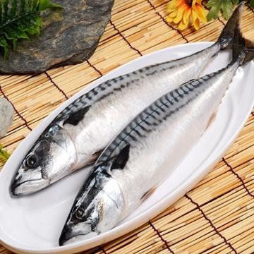 【華得水產】挪威鯖魚(550-600g/包/整尾)