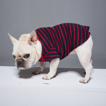 條紋襯衫領POLO寵物衣(加寬版)