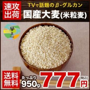 国産大麦(米粒麦) 大麦β-グルカンなど食物繊維が豊富 米粒麦(国産)たっぷり 950g 送料無料3~7営業日以内に出荷(土日祝除く)  big_dr