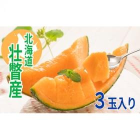 <2020年7月中旬よりお届け>北海道壮瞥産 赤肉メロン 3玉入り  約6kg