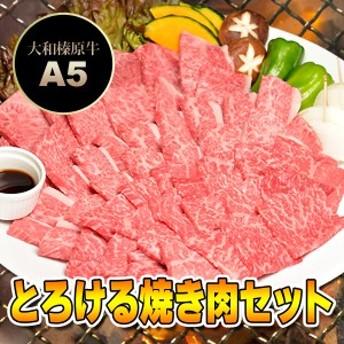 牛肉 黒毛和牛 A5 大和榛原牛 とろける焼き肉セット 松 750g カルビ 250g +極上バラ 250g +霜降り肉 250g 4~5人前 送料無料