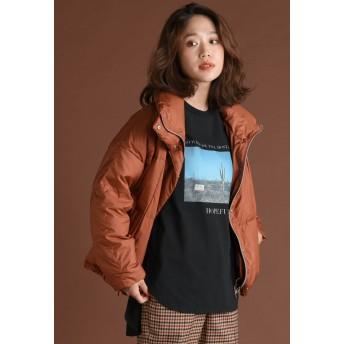 LIPSTAR 【WEB別注カラー有】ハイスペックダウンジャケット ダウンコート,ブラウン
