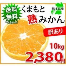 みかん 送料無料 10kg 訳あり 熊本県産 ミカン 蜜柑 ご自宅用 ポイント消化