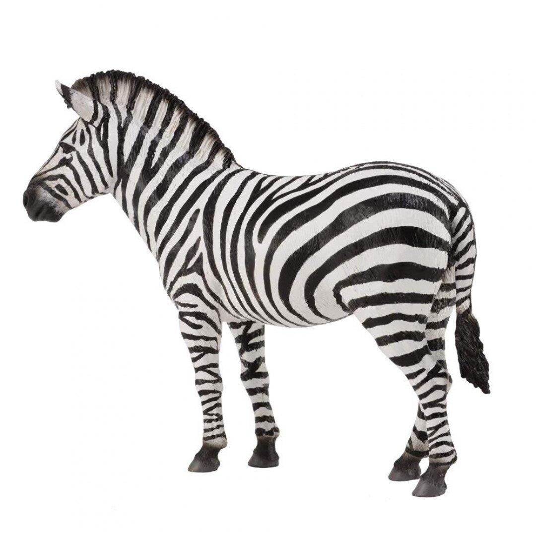 動物模型《 COLLECTA 》平原斑馬