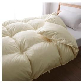 【日本製】抗菌防臭羽毛掛け布団(ダックダウン90%) 掛け布団, Comforters, 被子