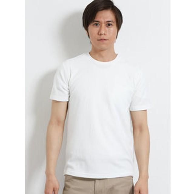 【m.f.editorial:トップス】リンクスチェックジャガード クルーネック半袖Tシャツ