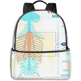 リュック リュックサック PCバック ビジネスリュック 大容量 ラップトップ バックパック 男女兼用 アウトドア旅行防水 胸部神経解剖図