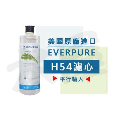 【水屋 ~ 附發票】美國原裝進口 Everpure H54 濾心(本產品為平行輸入) 贈計時器