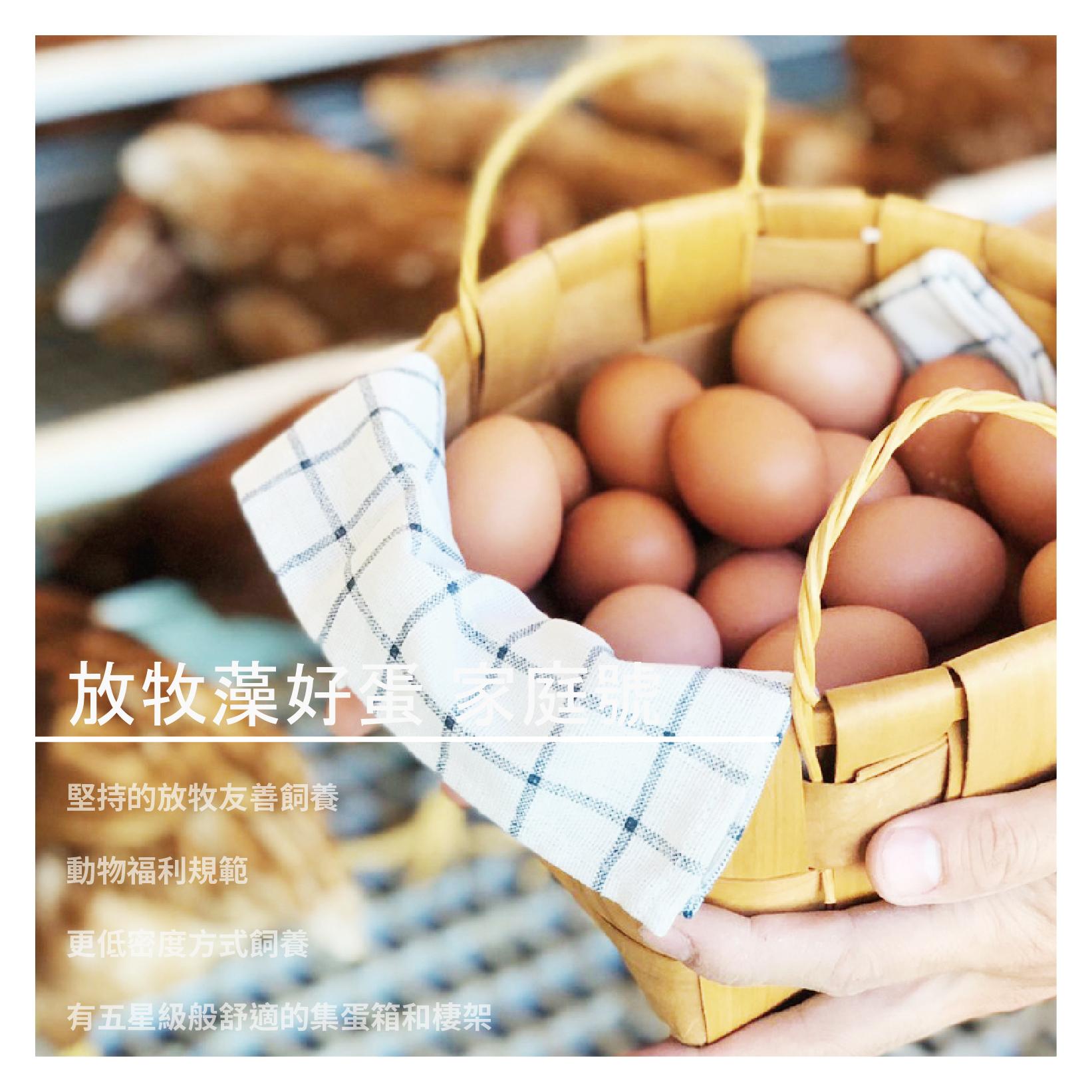 【育誠藻好蛋】放牧藻好蛋 家庭號 24入X2箱