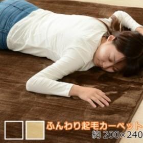 起毛カーペット 200×240cm ラグ リビングマット ふんわり カーペット 暖かい 冬