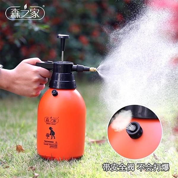 噴霧器 澆花噴壺自動氣壓式噴水壺小型灑水壺清洗玻璃壓力噴霧器園藝工具T